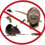 رش مبيدات بالرياض مع الضمان شركة البيوت 0530180639